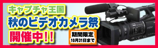 秋のビデオカメラ祭