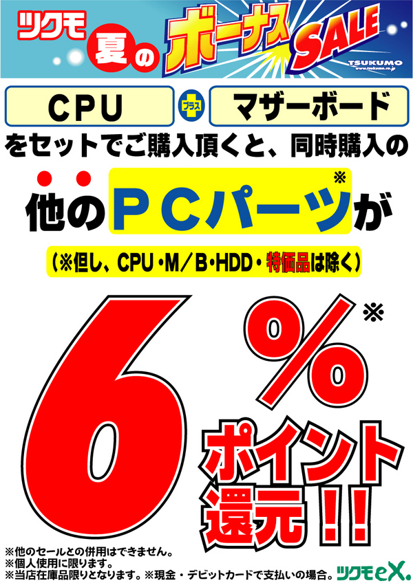 20100305_6pt.jpg