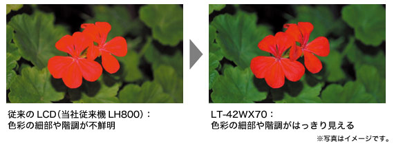 image_gamma.jpg