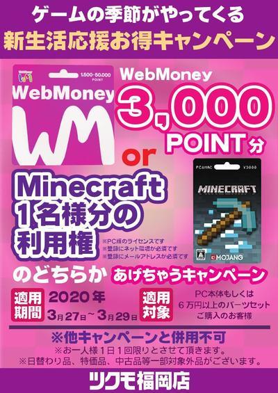 3000webminecra4_000001.jpg
