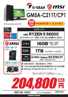 GM5A-C211T_CP1.png