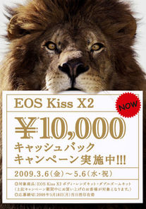 eos3.jpg