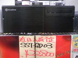 SSTGD03-1.JPG