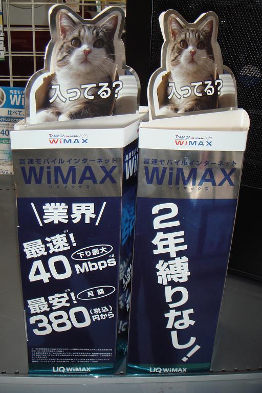 WiMAX%E8%A3%85%E9%A3%BE.JPG