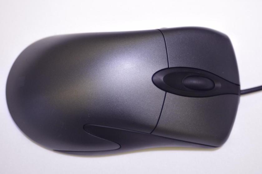 IMGP5081.JPG
