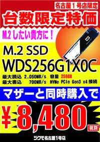 m2256G-01.jpg