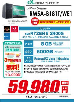 RM5A-B181T_WE1.jpg
