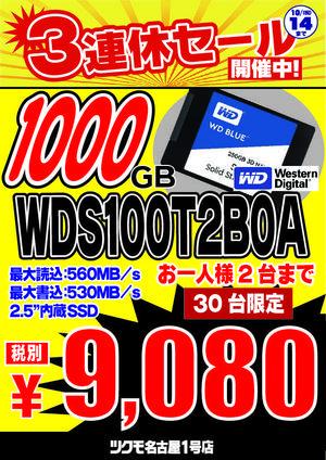 3連休特価WDS100T2B0A-01.jpg