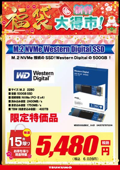 年始用WDS500G2B0C_名抽選_限定.png