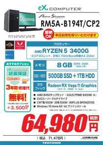 RM5A-B194T_CP2-1.jpg