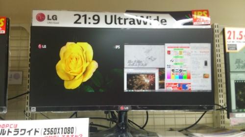 DSC_0113.JPGのサムネイル画像