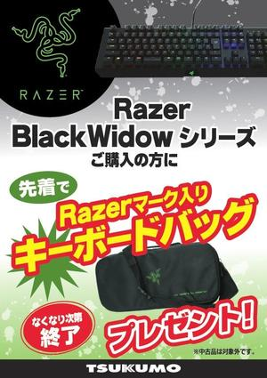 20160811_razer_blackwidow_bag.jpg