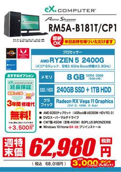 65980_RM5A-B181T_CP1.jpg