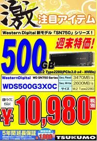 WDM2SSD500GB.jpg
