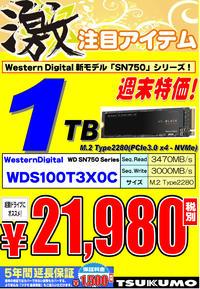 WDM2SSD1TB.jpg