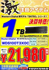 WD-SSD-1TB.jpg