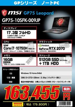 GP75-10SFK-009JP.jpg