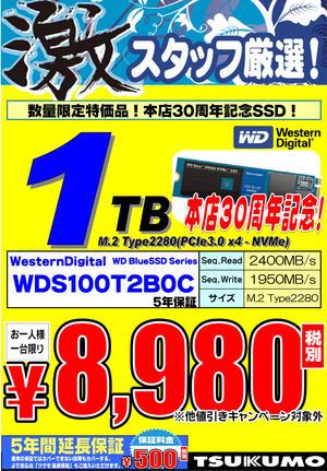 WDS100T2B0C.jpg