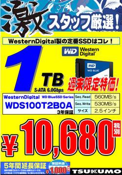 WD_SSD_1TB.jpg