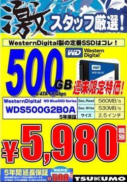 WD_SSD_500GB.jpg