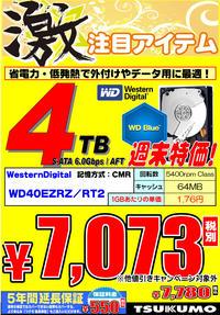 HDD_WD_4TB.jpg