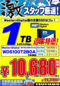 SSD_WD_1TB.jpg