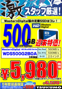 SSD_WD_500GB.jpg