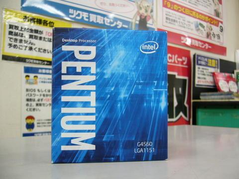 P1040260.JPG